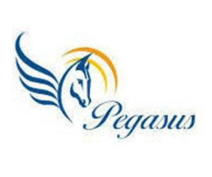 pegasus-center